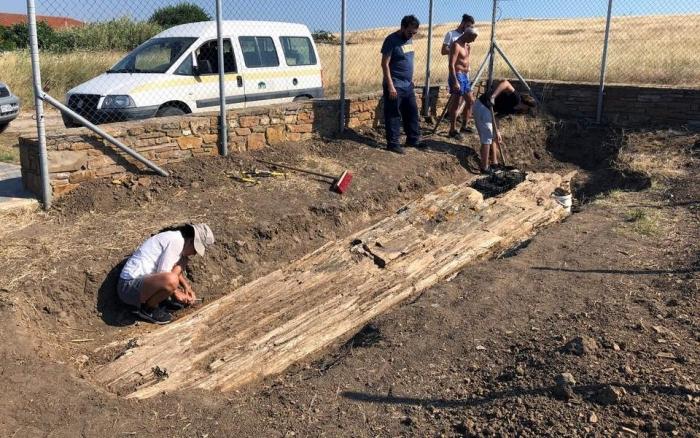 Γιγαντιαίος κορμός απολιθωμένου δένδρου βρέθηκε στο Βάρος της ...