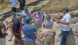 Τα μοναδικά απολιθώματα του Πάρκου Απολιθωμένου Δάσους στη θέση «Μπαλή Αλώνια»