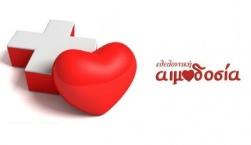 Εθελοντική Αιμοδοσία στην Βρίσα