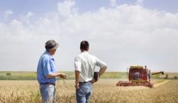 Σύντομη οριστικοποίηση δασωμένων αγρών, αγροτικών καλλιεργειών σε εκχερσωμένες εκτάσεις, και νησιωτικών χορτολίβαδων